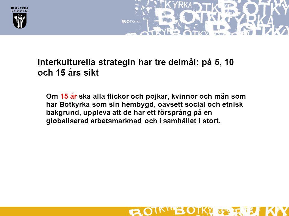 Interkulturella strategin har tre delmål: på 5, 10 och 15 års sikt