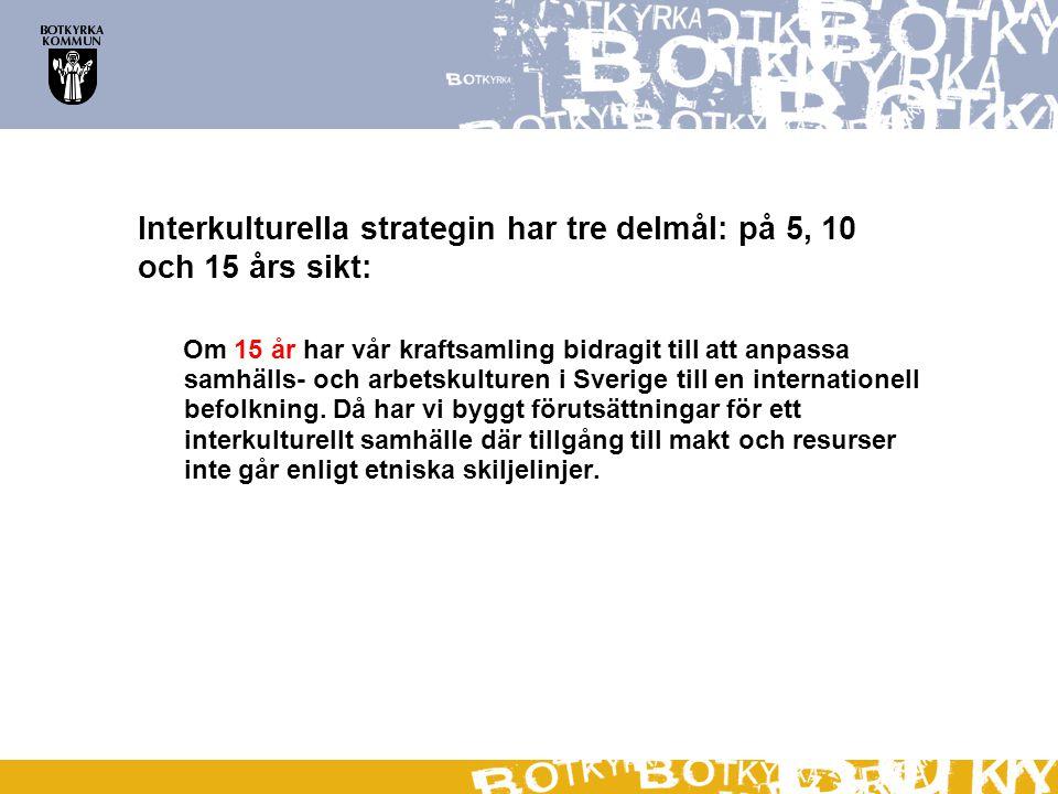Interkulturella strategin har tre delmål: på 5, 10 och 15 års sikt: