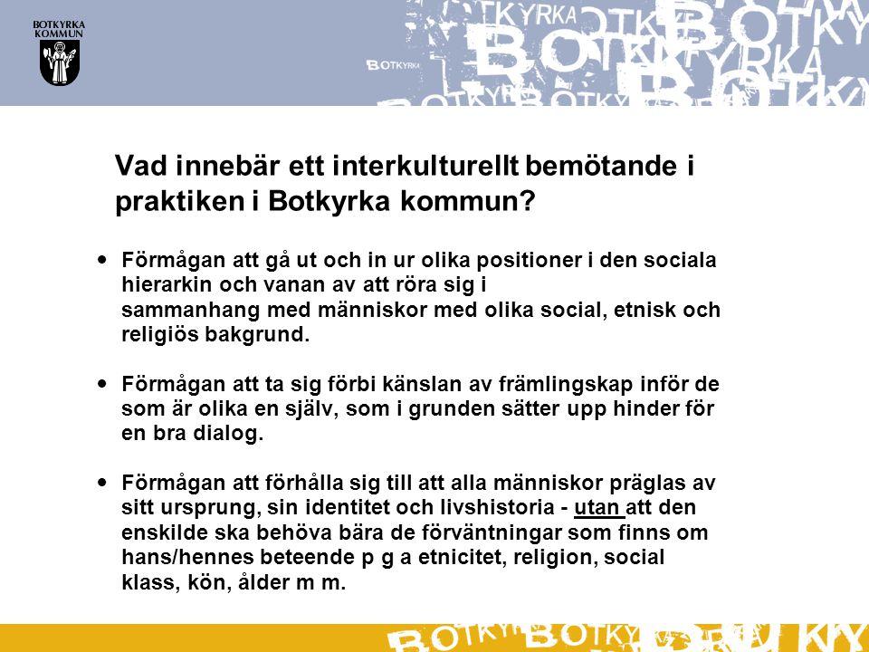 Vad innebär ett interkulturellt bemötande i praktiken i Botkyrka kommun