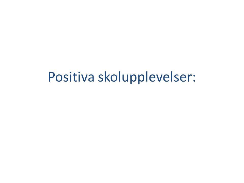Positiva skolupplevelser:
