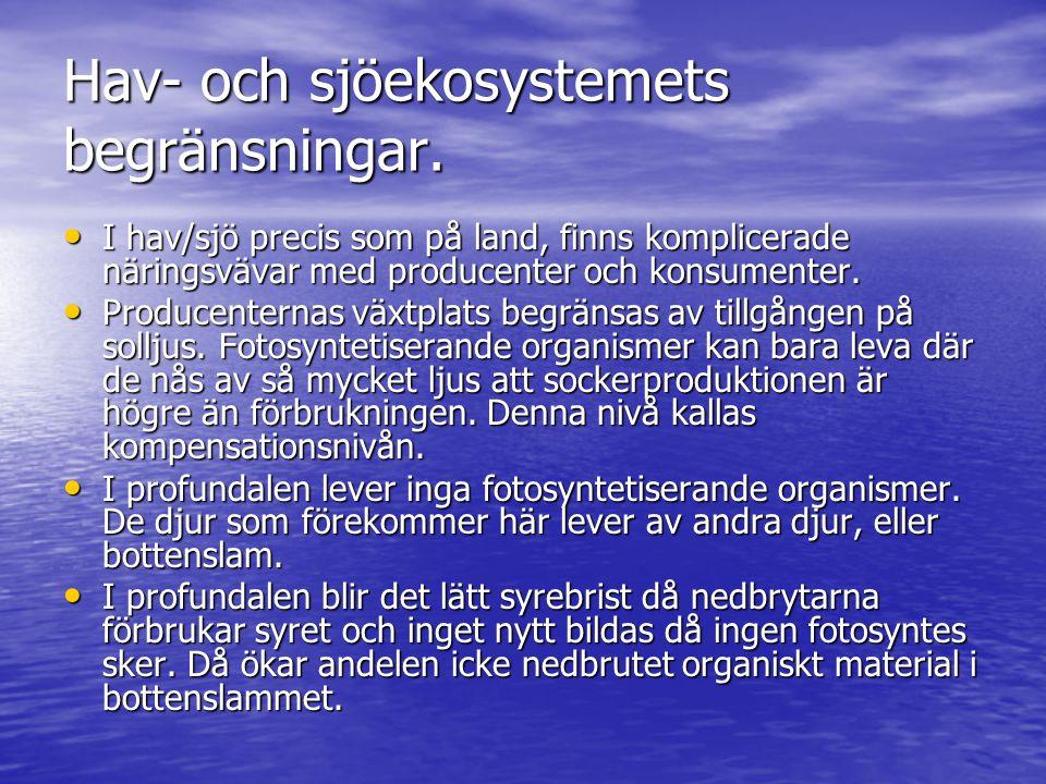 Hav- och sjöekosystemets begränsningar.