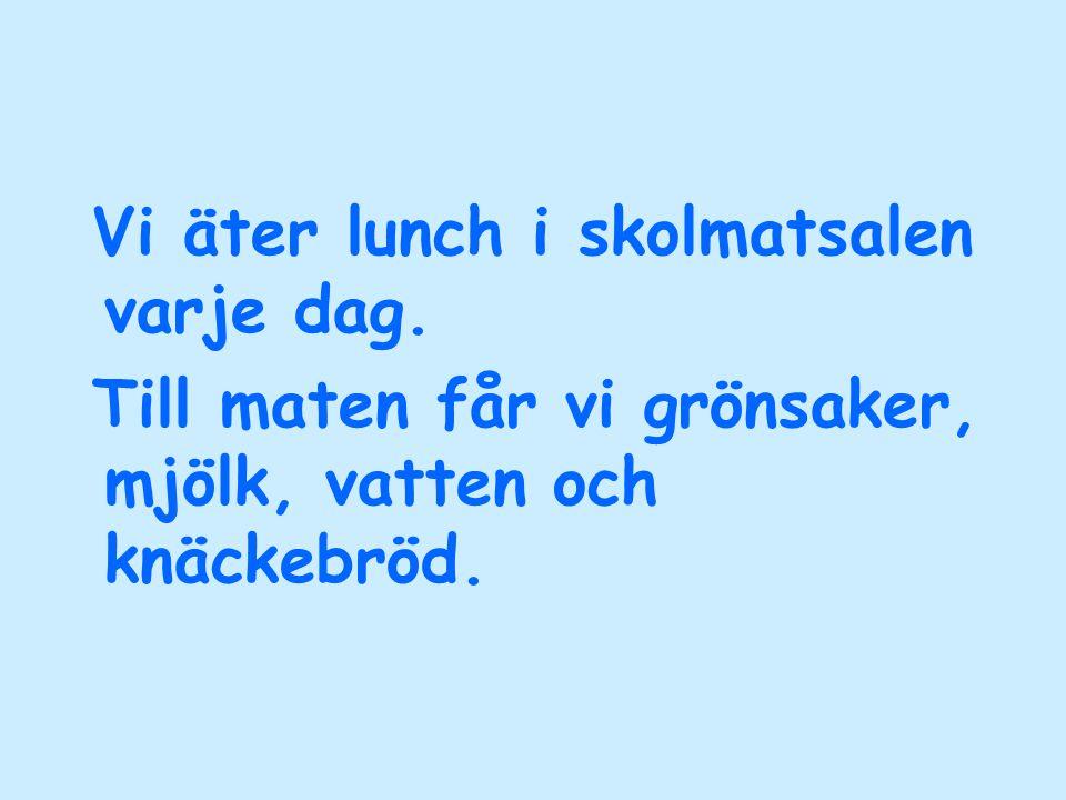 Vi äter lunch i skolmatsalen varje dag.