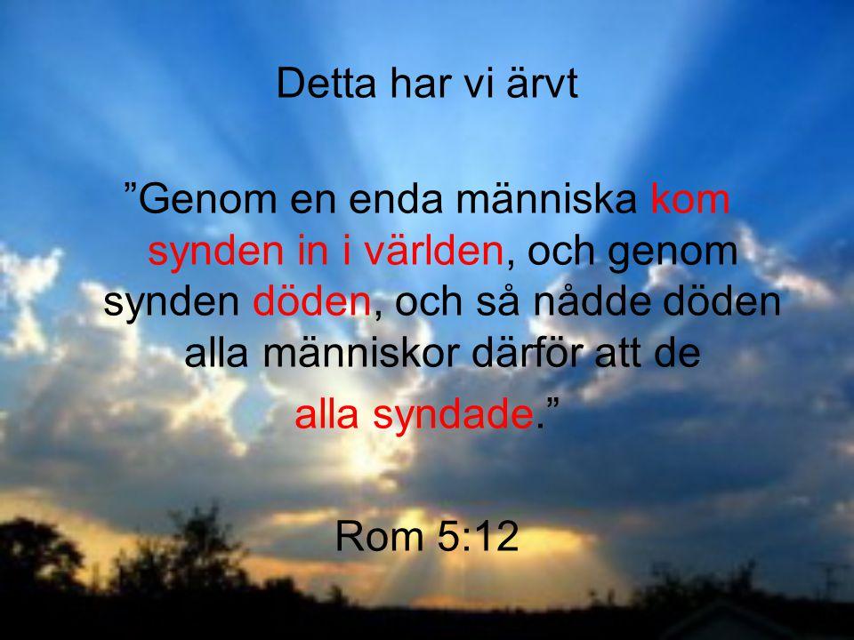 Detta har vi ärvt Genom en enda människa kom synden in i världen, och genom synden döden, och så nådde döden alla människor därför att de.