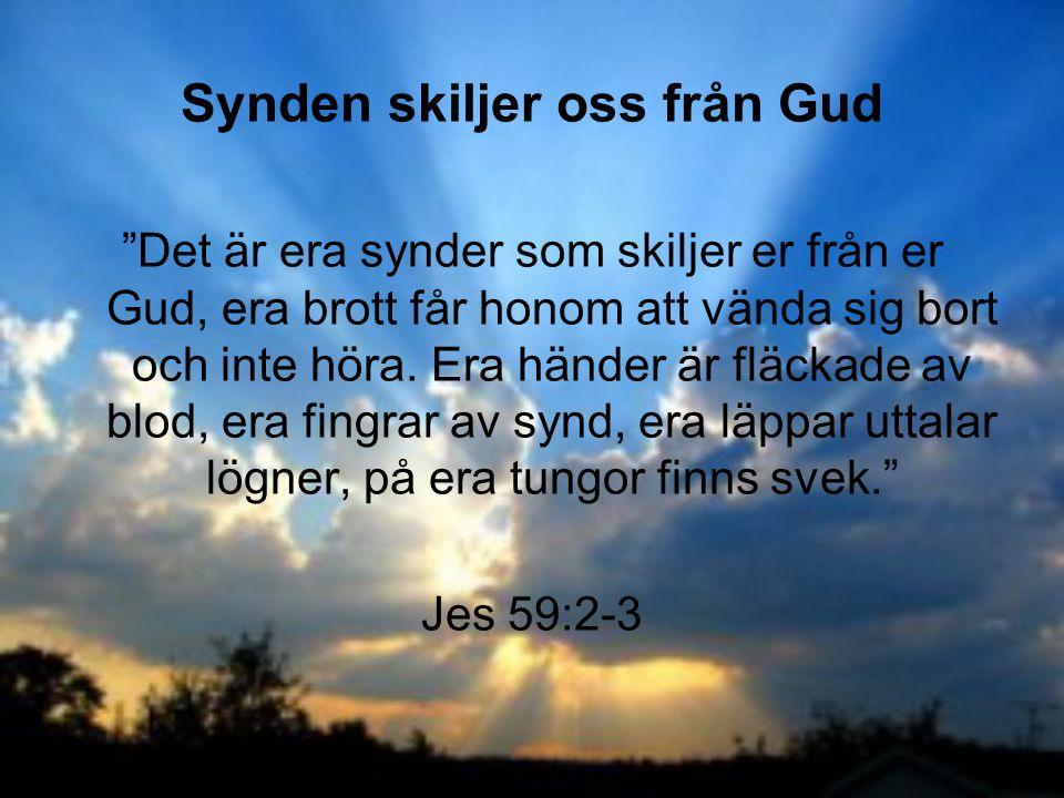 Synden skiljer oss från Gud