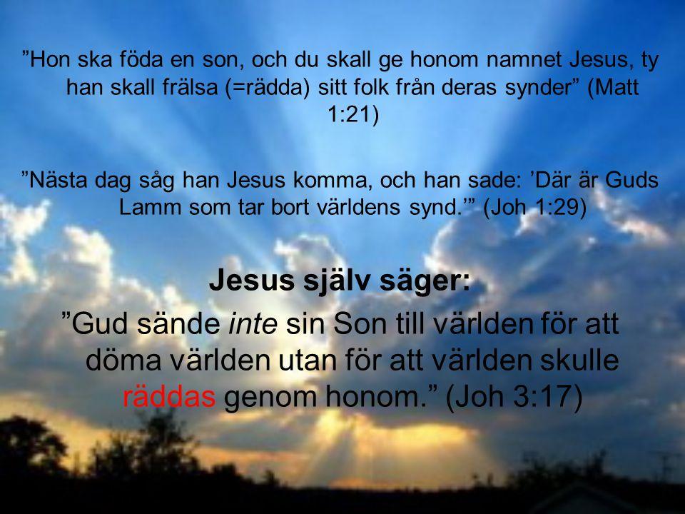 Hon ska föda en son, och du skall ge honom namnet Jesus, ty han skall frälsa (=rädda) sitt folk från deras synder (Matt 1:21)