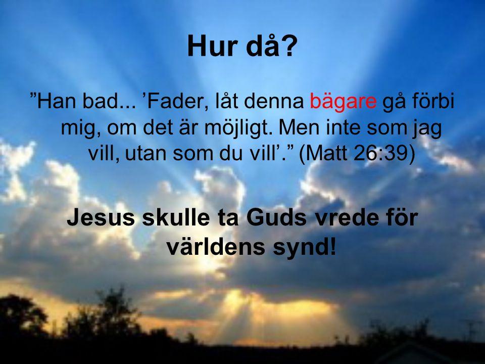 Jesus skulle ta Guds vrede för världens synd!