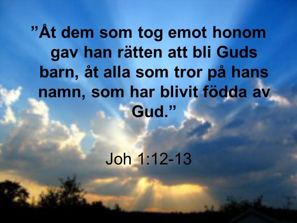 Åt dem som tog emot honom gav han rätten att bli Guds barn, åt alla som tror på hans namn, som har blivit födda av Gud.