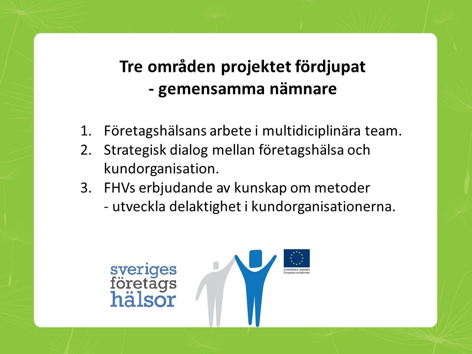 Tre områden projektet fördjupat - gemensamma nämnare