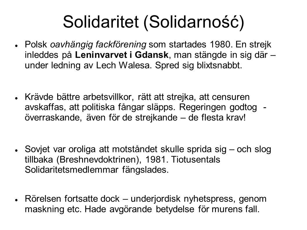 Solidaritet (Solidarność)