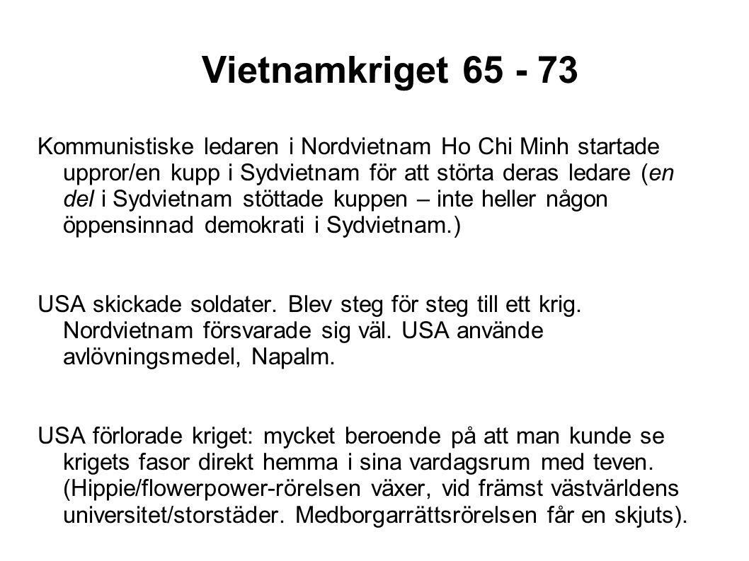 Vietnamkriget 65 - 73
