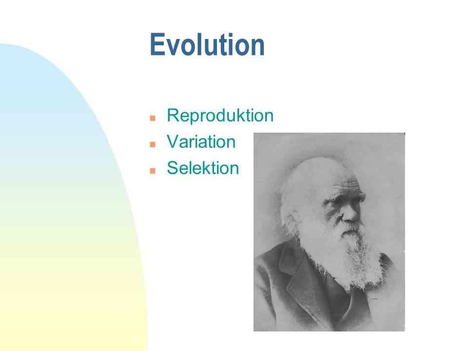 Evolution Reproduktion Variation Selektion