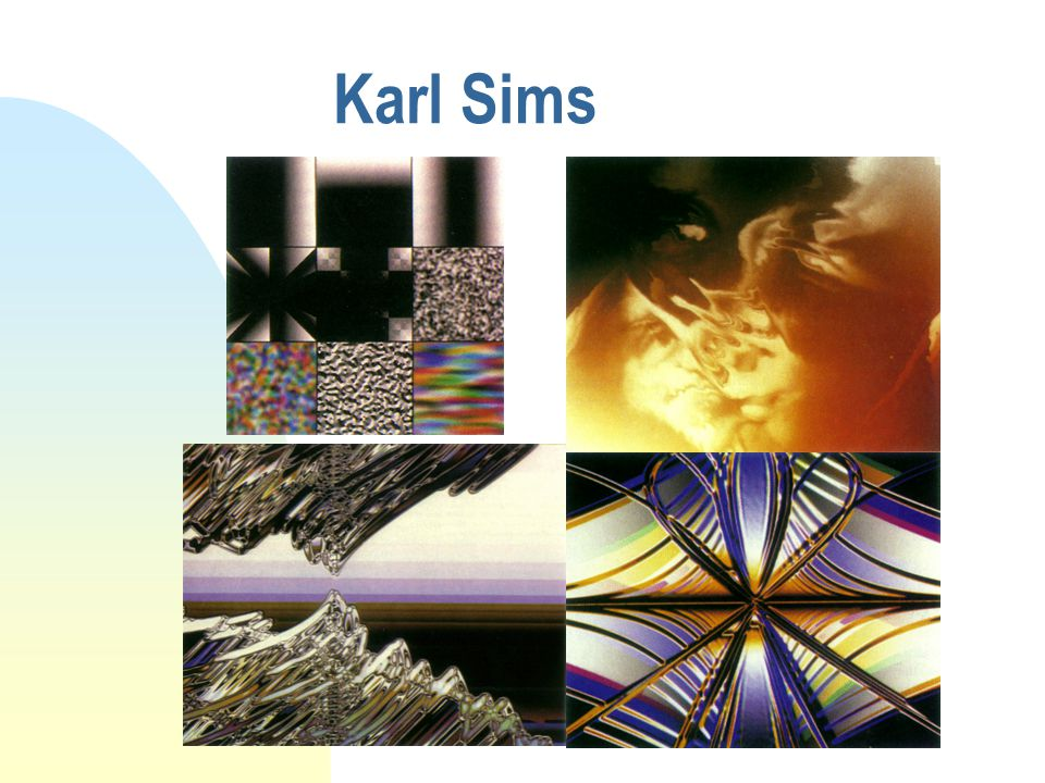 Karl Sims