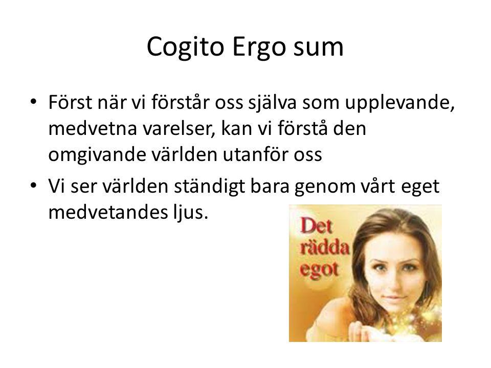 Cogito Ergo sum Först när vi förstår oss själva som upplevande, medvetna varelser, kan vi förstå den omgivande världen utanför oss.