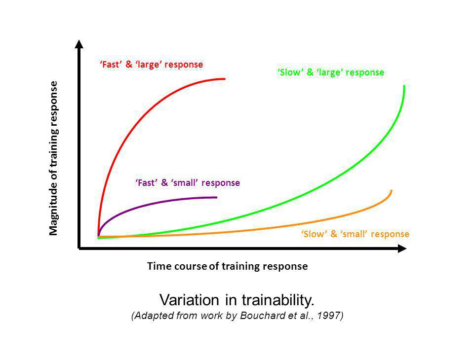 'Fast' & 'large' response