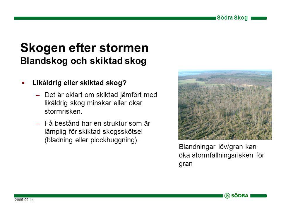Skogen efter stormen Blandskog och skiktad skog
