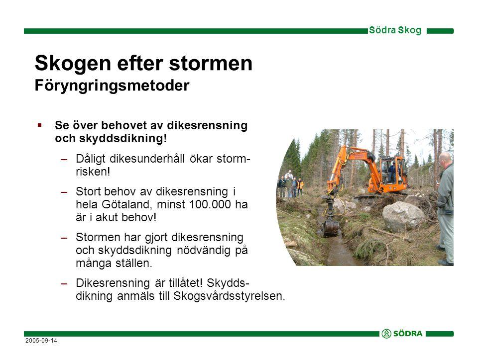 Skogen efter stormen Föryngringsmetoder