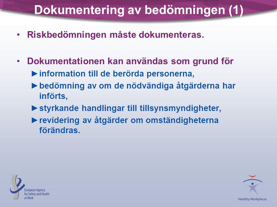 Dokumentering av bedömningen (1)