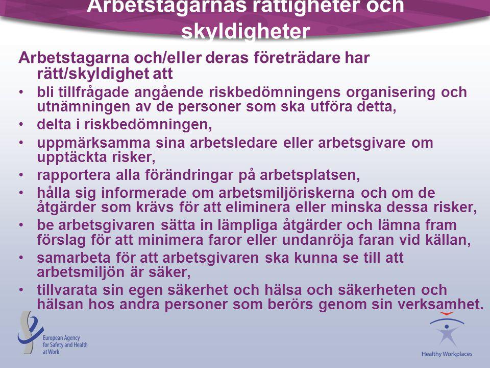 Arbetstagarnas rättigheter och skyldigheter