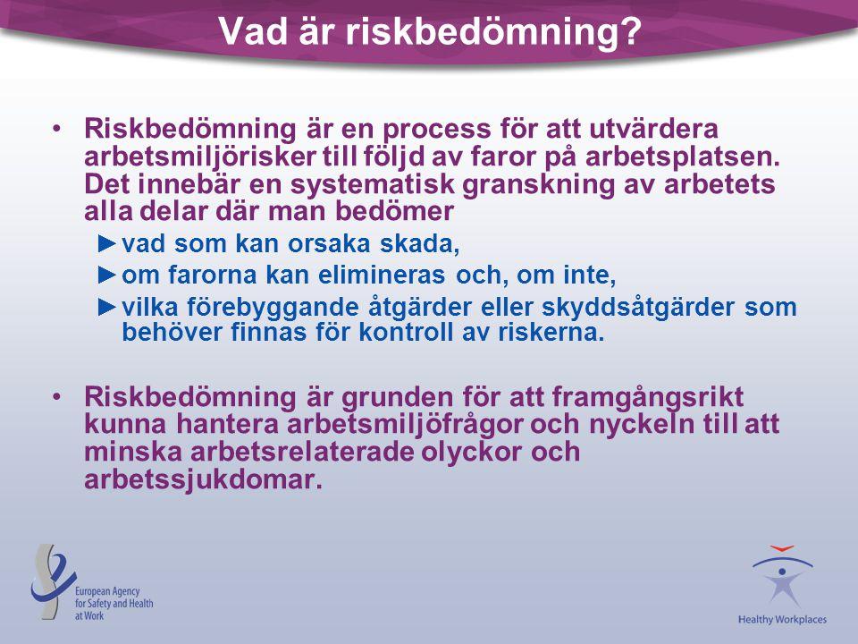 Vad är riskbedömning