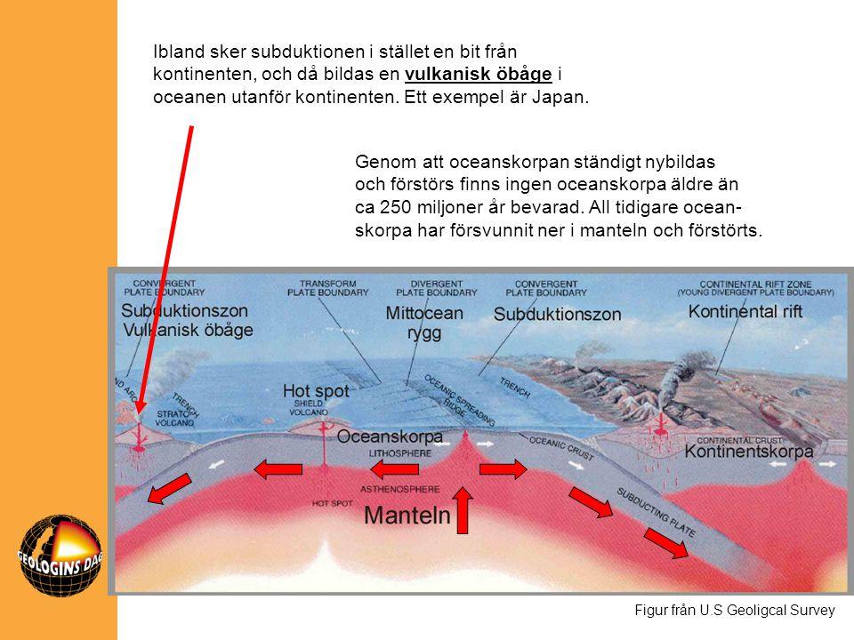 Ibland sker subduktionen i stället en bit från kontinenten, och då bildas en vulkanisk öbåge i oceanen utanför kontinenten. Ett exempel är Japan.