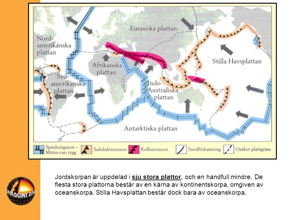 Jordskorpan är uppdelad i sju stora plattor, och en handfull mindre