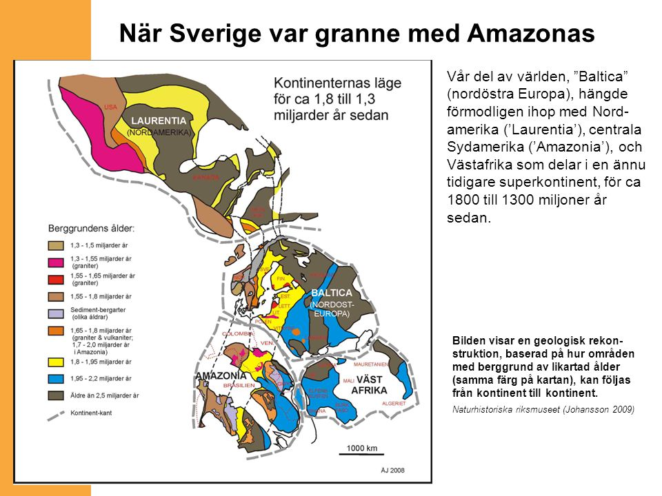 När Sverige var granne med Amazonas