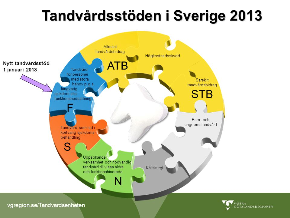 Tandvårdsstöden i Sverige 2013