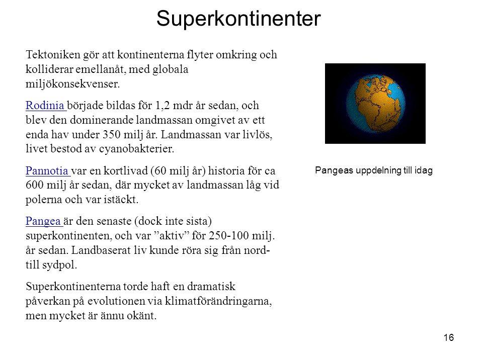 Superkontinenter Tektoniken gör att kontinenterna flyter omkring och kolliderar emellanåt, med globala miljökonsekvenser.