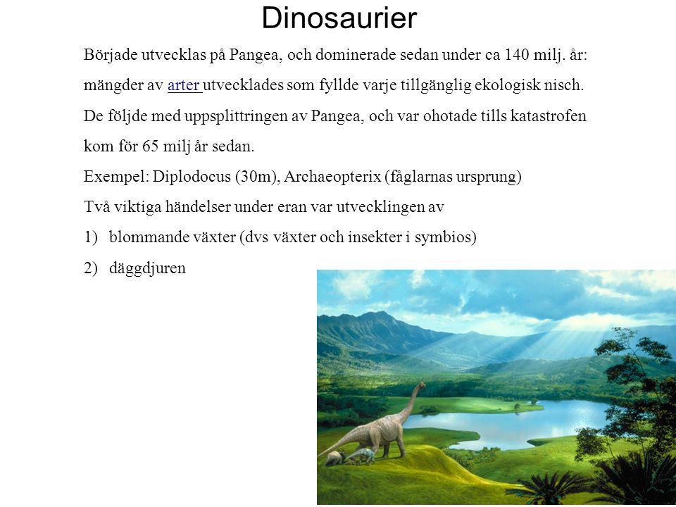 Dinosaurier Började utvecklas på Pangea, och dominerade sedan under ca 140 milj. år: