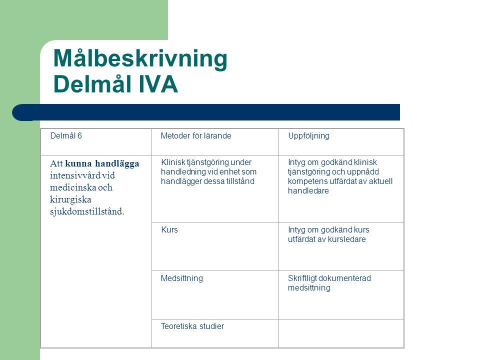 Målbeskrivning Delmål IVA