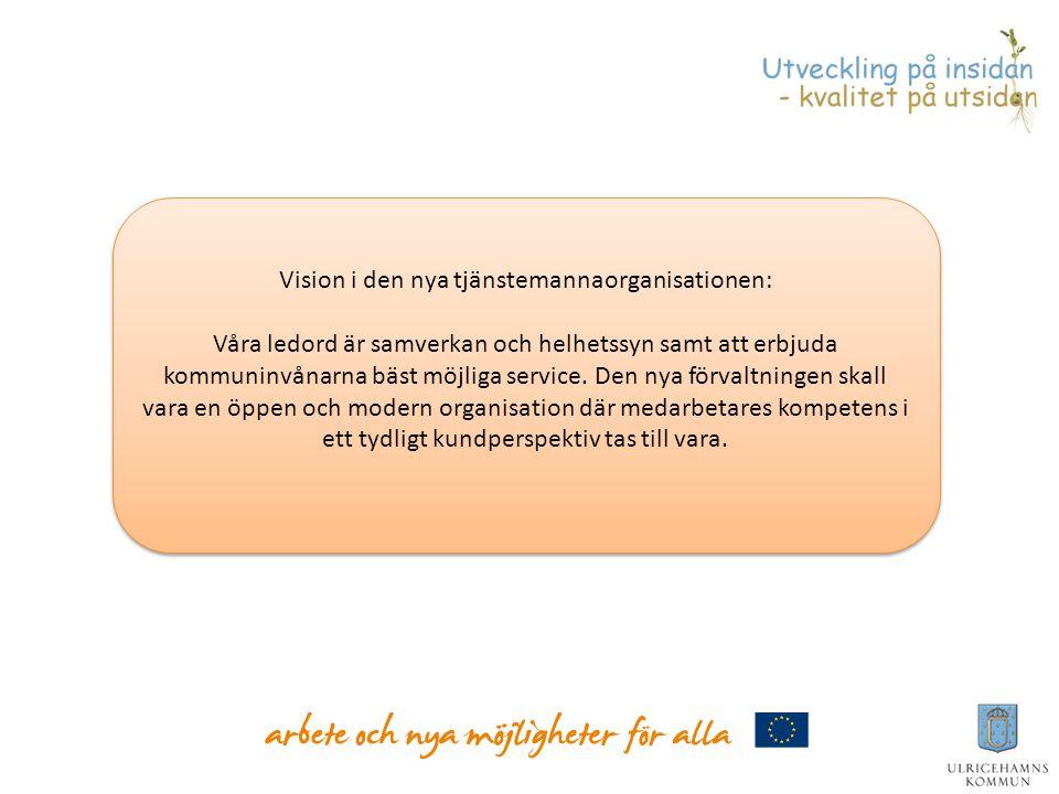 Vision i den nya tjänstemannaorganisationen: