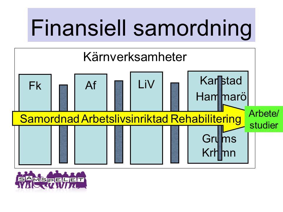 Finansiell samordning