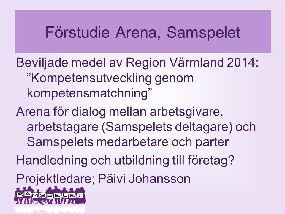 Förstudie Arena, Samspelet