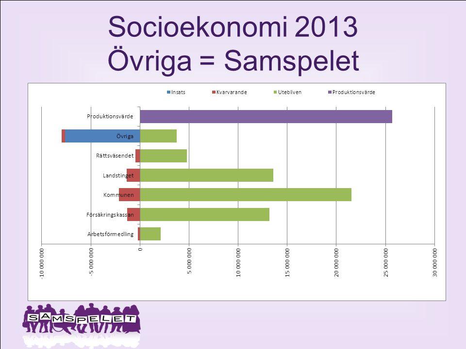 Socioekonomi 2013 Övriga = Samspelet