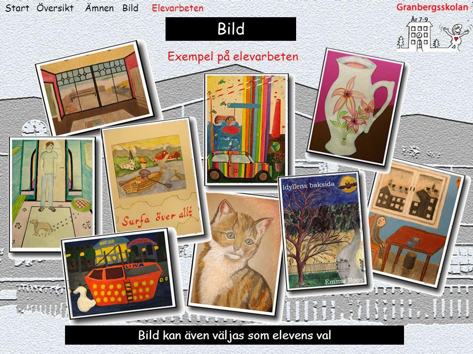 Bild Exempel på elevarbeten Bild kan även väljas som elevens val Start