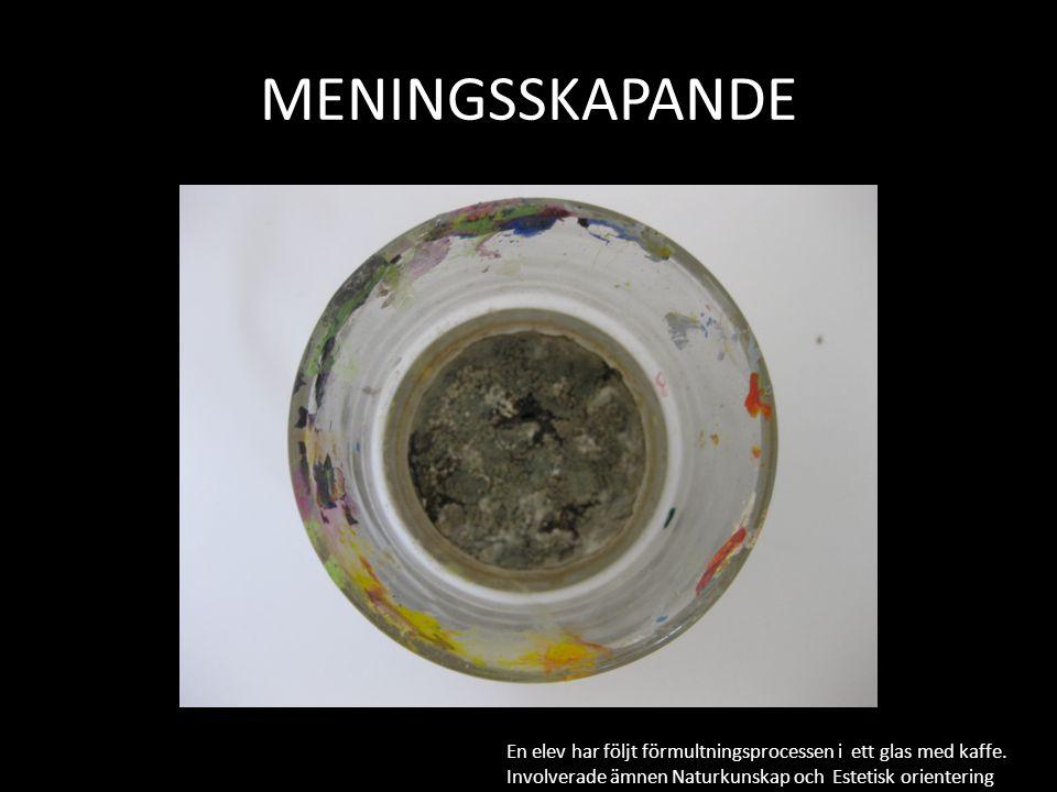 MENINGSSKAPANDE En elev har följt förmultningsprocessen i ett glas med kaffe.