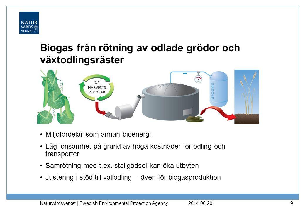 Biogas från rötning av odlade grödor och växtodlingsräster