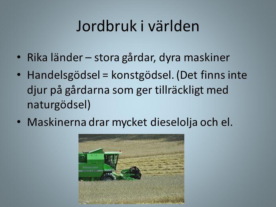 Jordbruk i världen Rika länder – stora gårdar, dyra maskiner