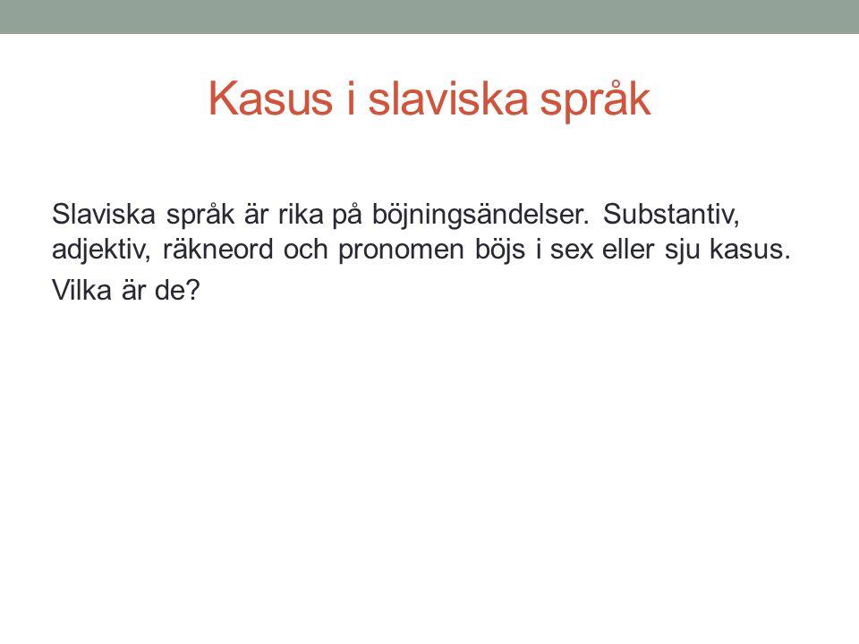 Kasus i slaviska språk
