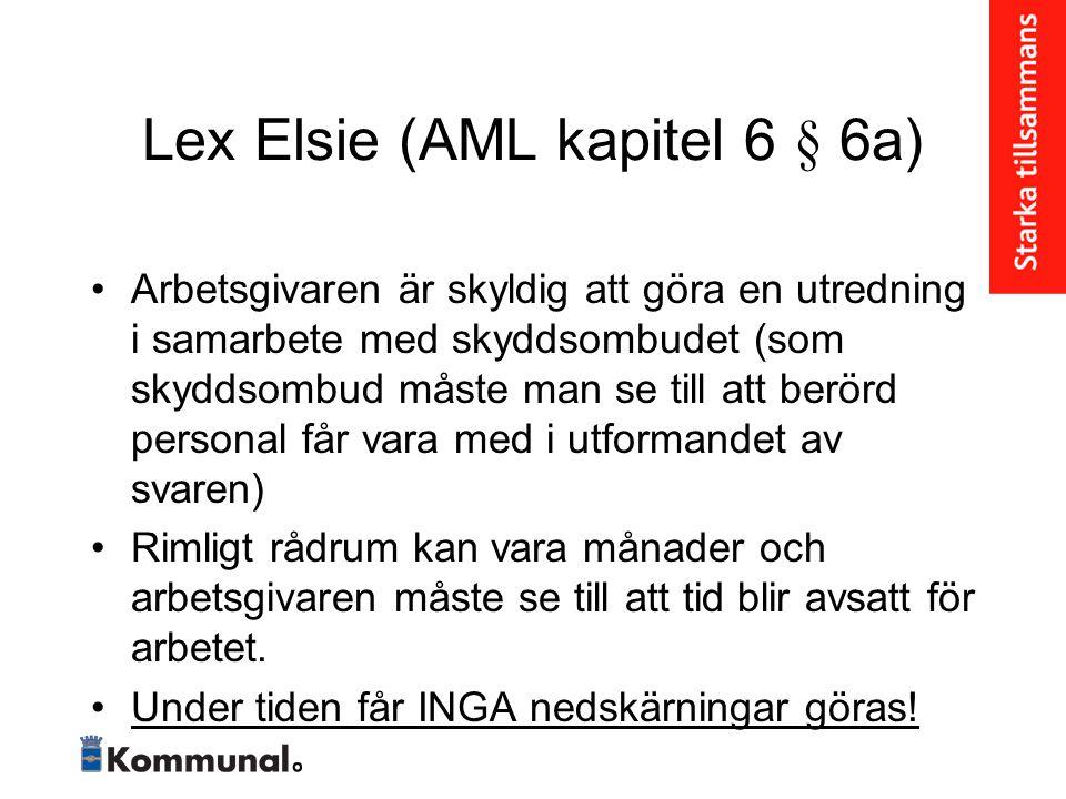 Lex Elsie (AML kapitel 6 § 6a)