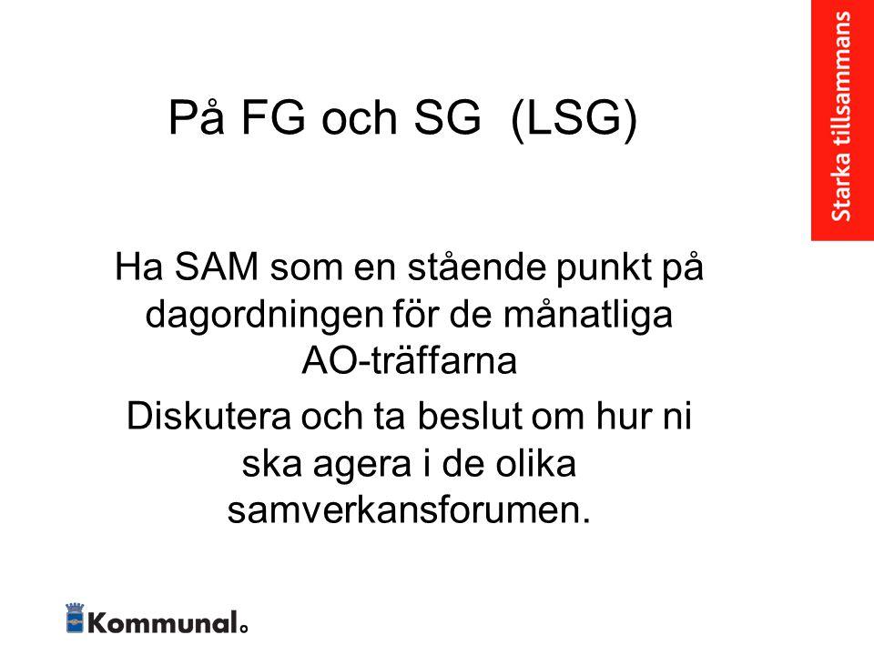På FG och SG (LSG) Ha SAM som en stående punkt på dagordningen för de månatliga AO-träffarna.