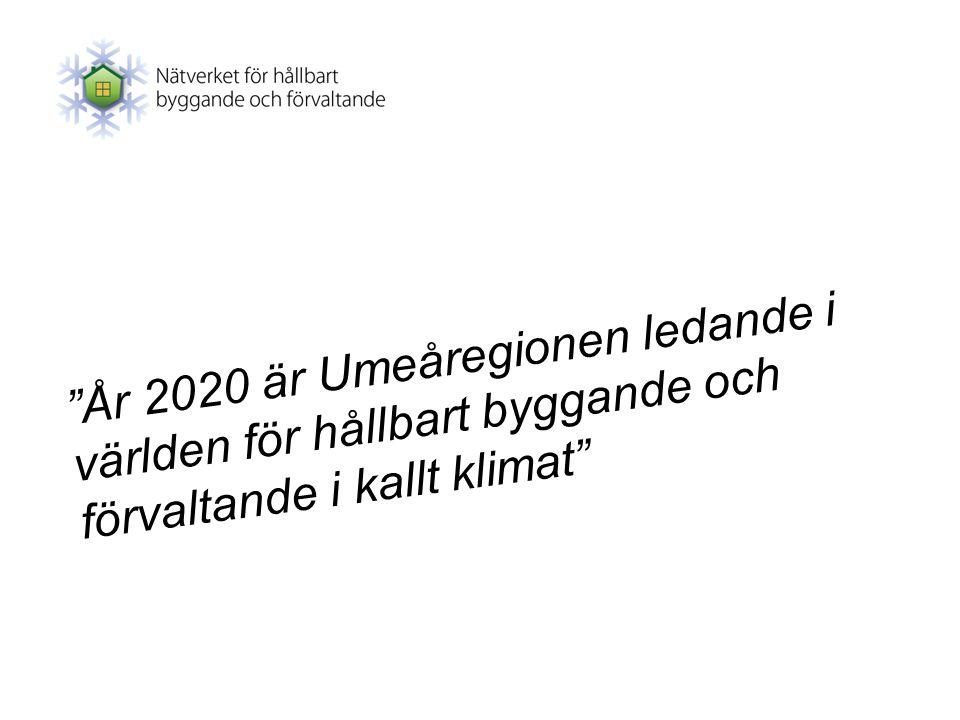 År 2020 är Umeåregionen ledande i världen för hållbart byggande och förvaltande i kallt klimat