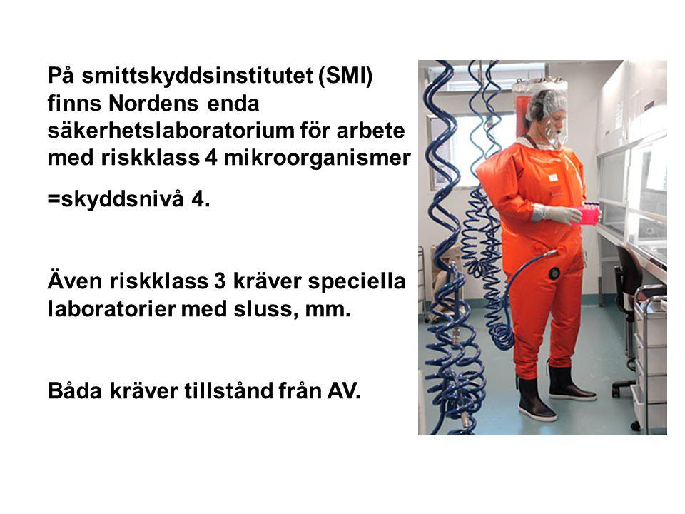 På smittskyddsinstitutet (SMI) finns Nordens enda säkerhetslaboratorium för arbete med riskklass 4 mikroorganismer