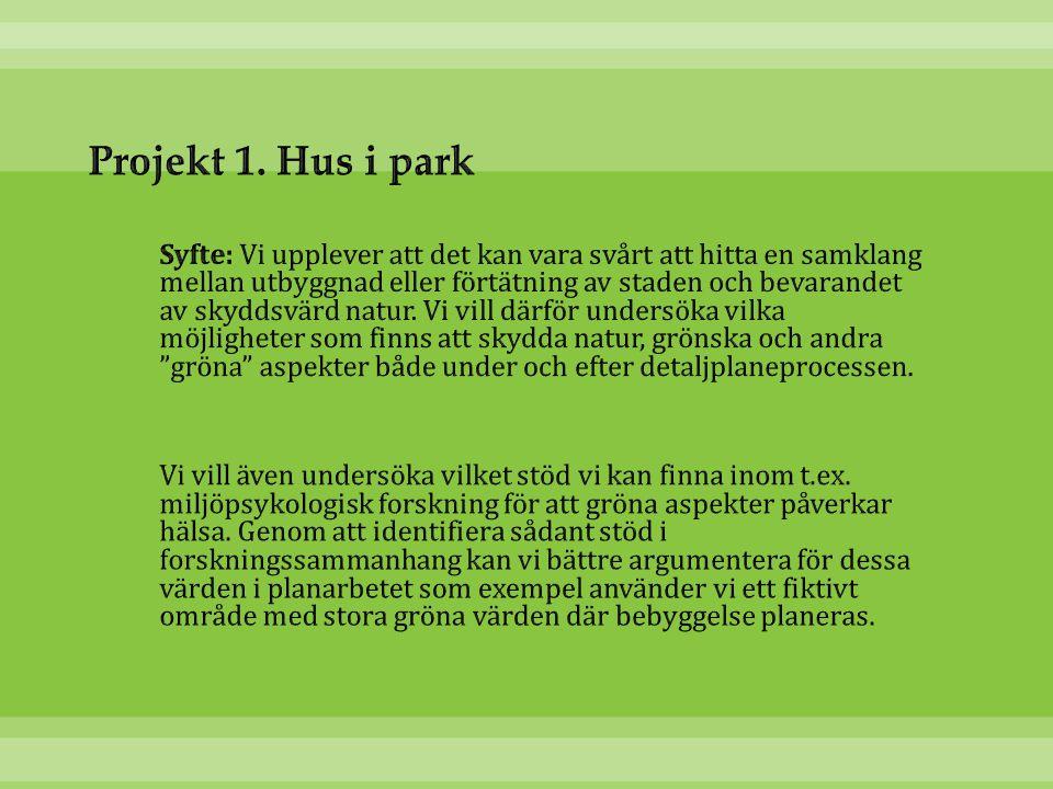 Projekt 1. Hus i park