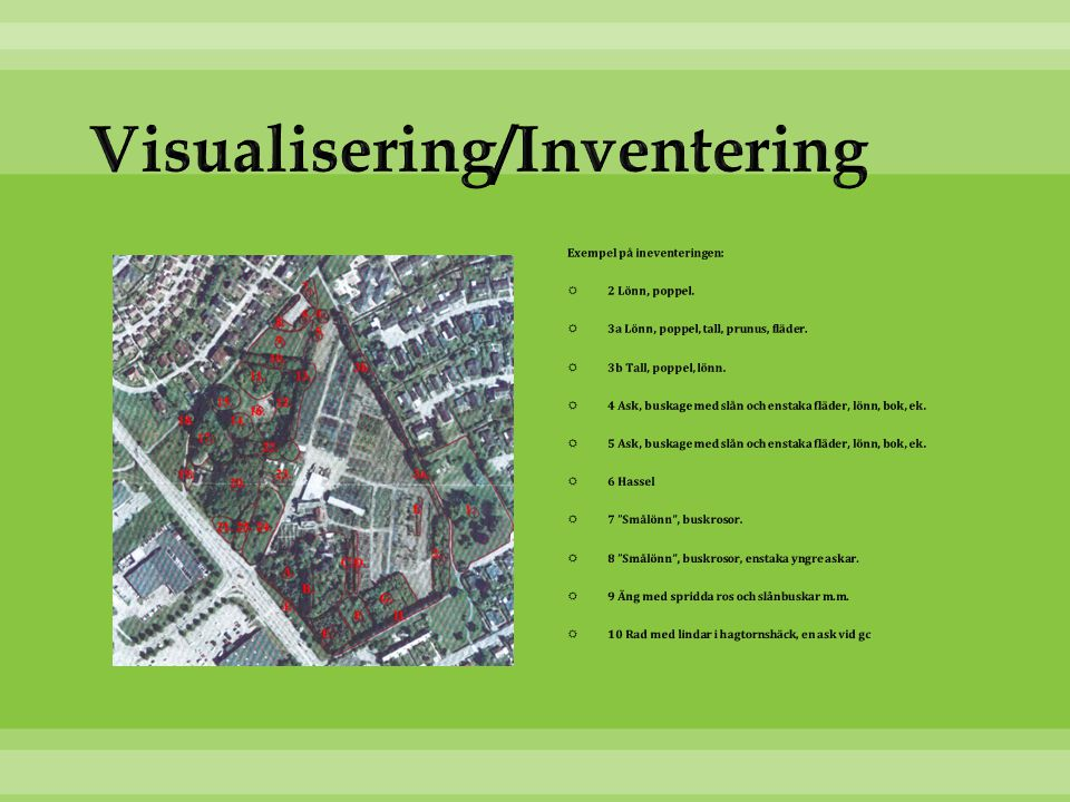 Visualisering/Inventering