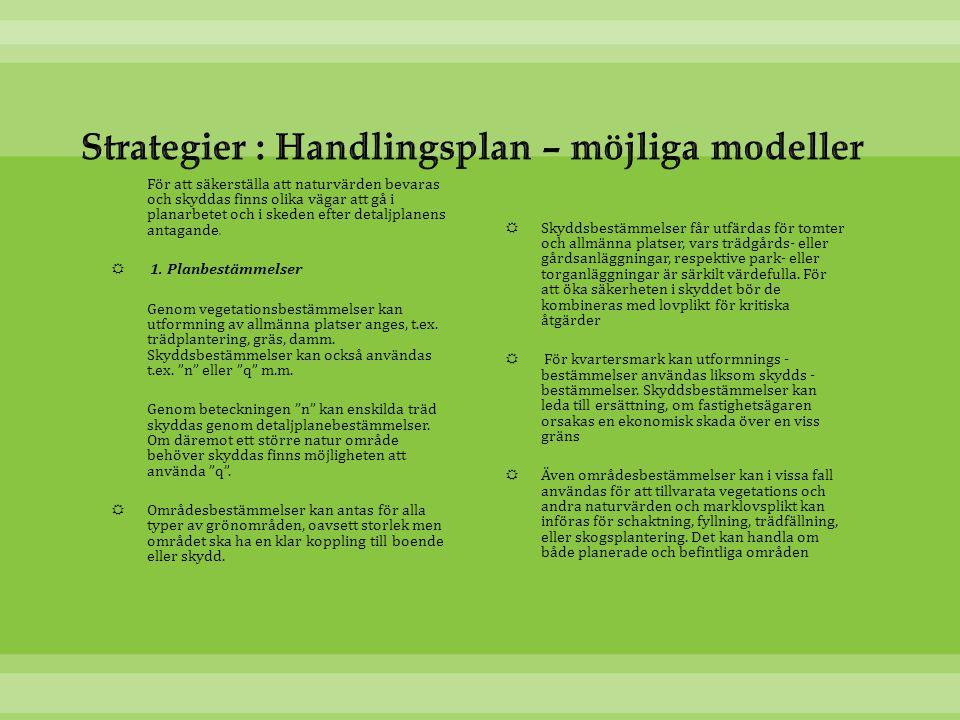 Strategier : Handlingsplan – möjliga modeller
