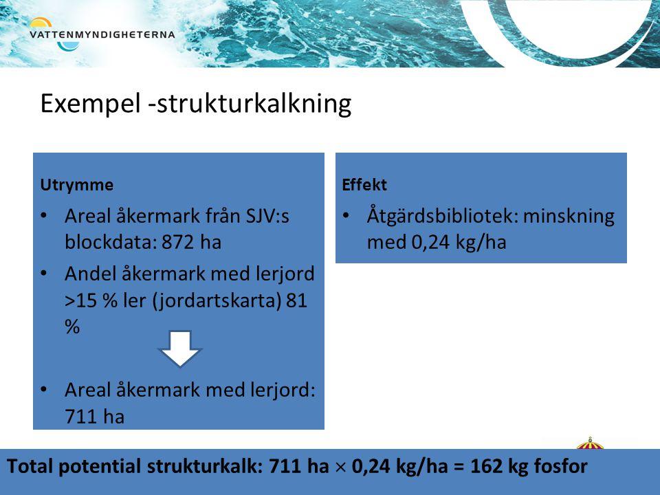 Exempel -strukturkalkning