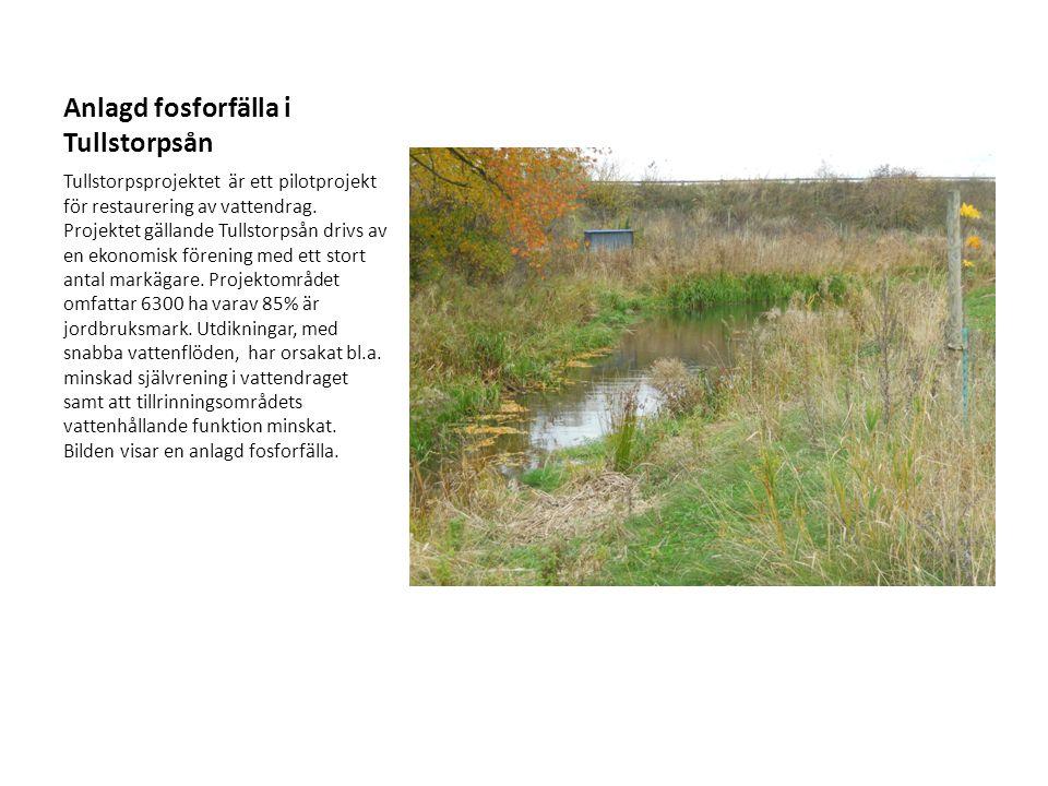 Anlagd fosforfälla i Tullstorpsån