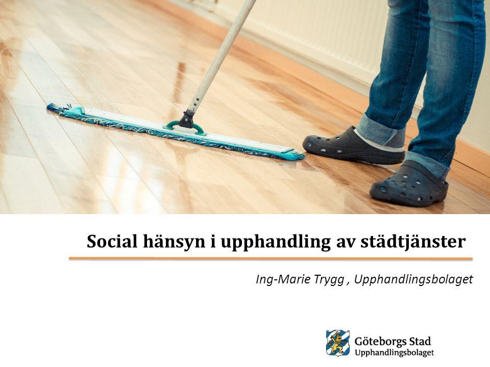 Ing-Marie Trygg , Upphandlingsbolaget