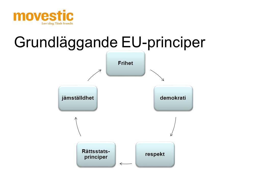 Hur började det Direktiv om grundläggande rättigheter 2004/113/EG